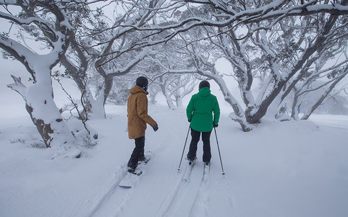 Perisher Skier Snowboarder Snow Trees blog