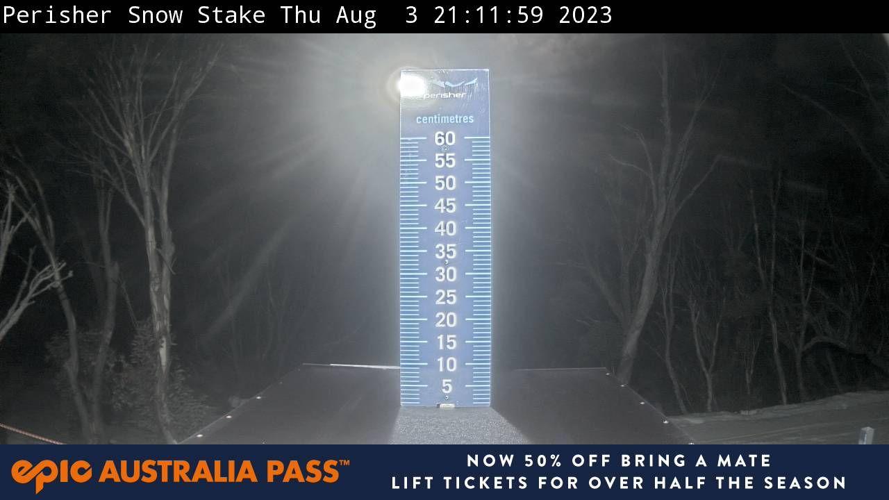 Snow Stake Snow Cam